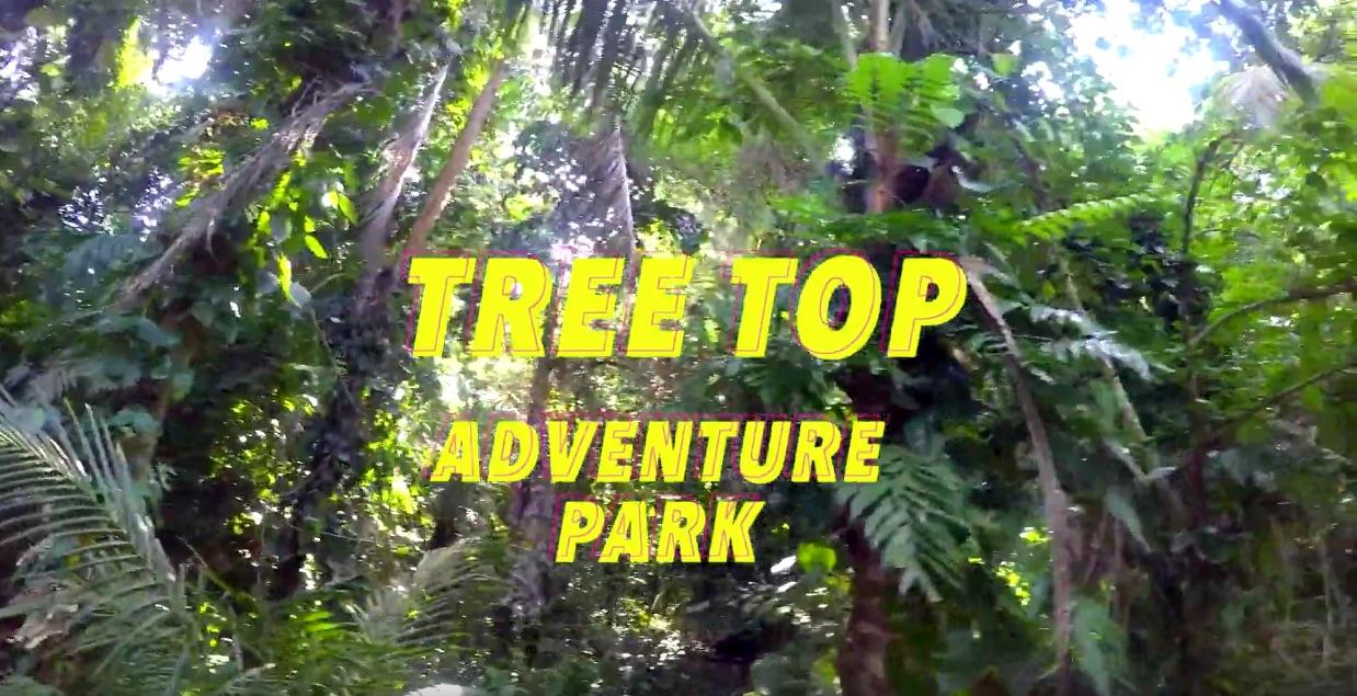 โหนสลิงวัดใจ  ชมวิวทะเลบนต้นไม้สูง ไปกับ Tree Top Adventure Park Koh Chang